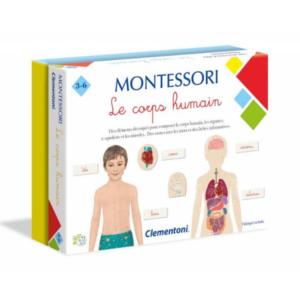 Le-corps-humain-Montessori-Clementoni