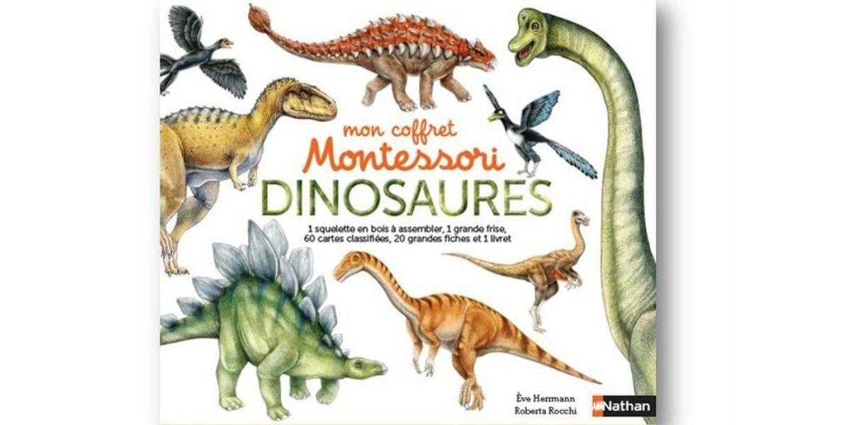 coffret-dinosaures
